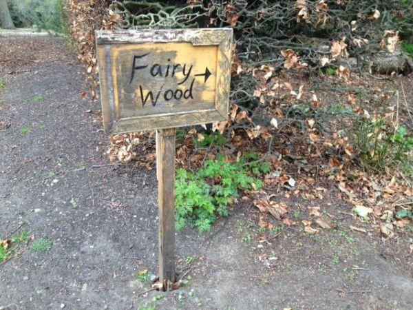 Fairy Wood Rekindles Traditional Scottish Folklore
