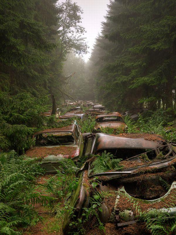 car-graveyard-chatillon-belgium-2