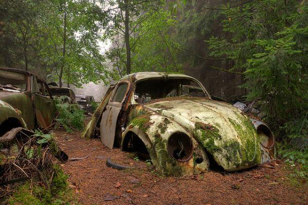 car-graveyard-chatillon-belgium