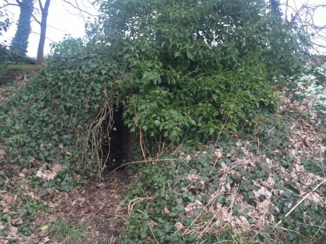 Hidden Wartime Air Raid Shelter West of River Almond, Edinburgh