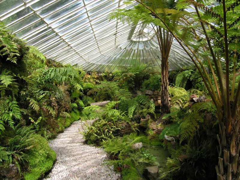Ascog Hall Fernery and Gardens