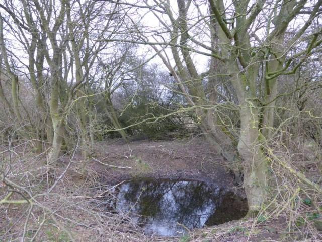 """A """"Hidden Pool"""" Near Creeton, Lincolnshire"""